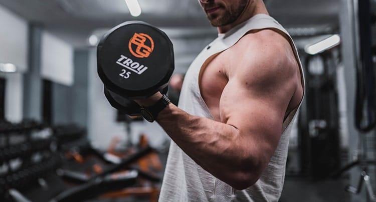 exercice curl biceps haltère