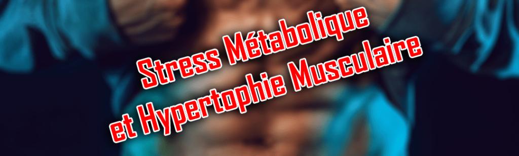 stress métabolique et hypertrophie musculaire