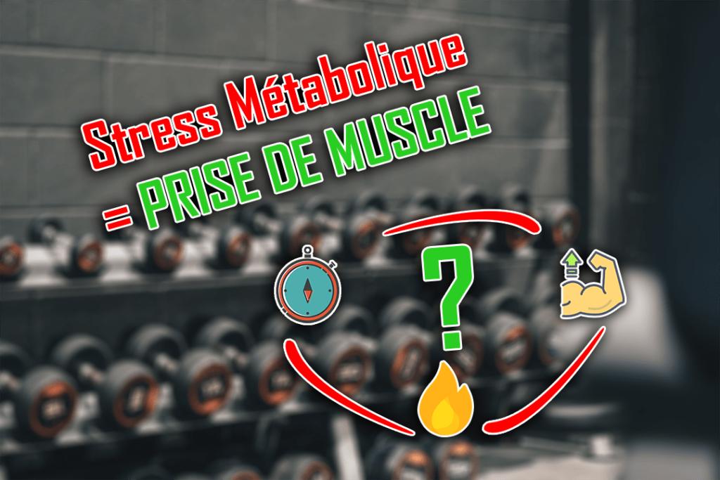 stress métabolique prise de muscle musculation