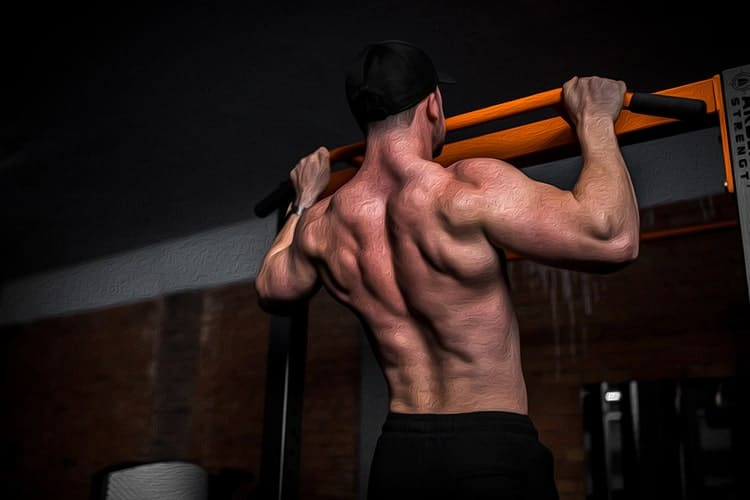 exercice musculation dos tractions