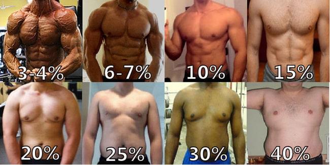 comparaison taux de masse grasse