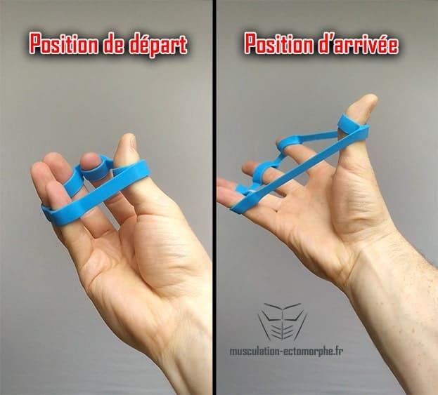 exercice d'échauffement pour les extenseurs des doigts