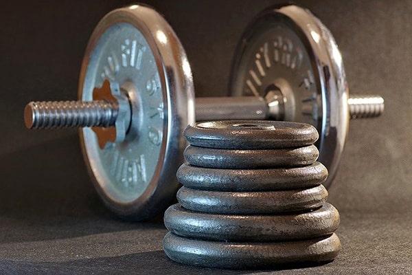 haltère musculation