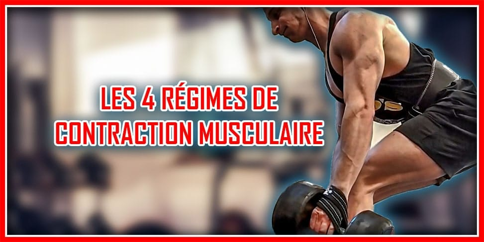 les régimes de contraction musculaire